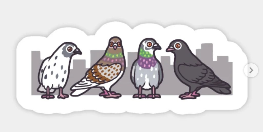 four cartoon pigeons standing in front of a silhouetted city skyline