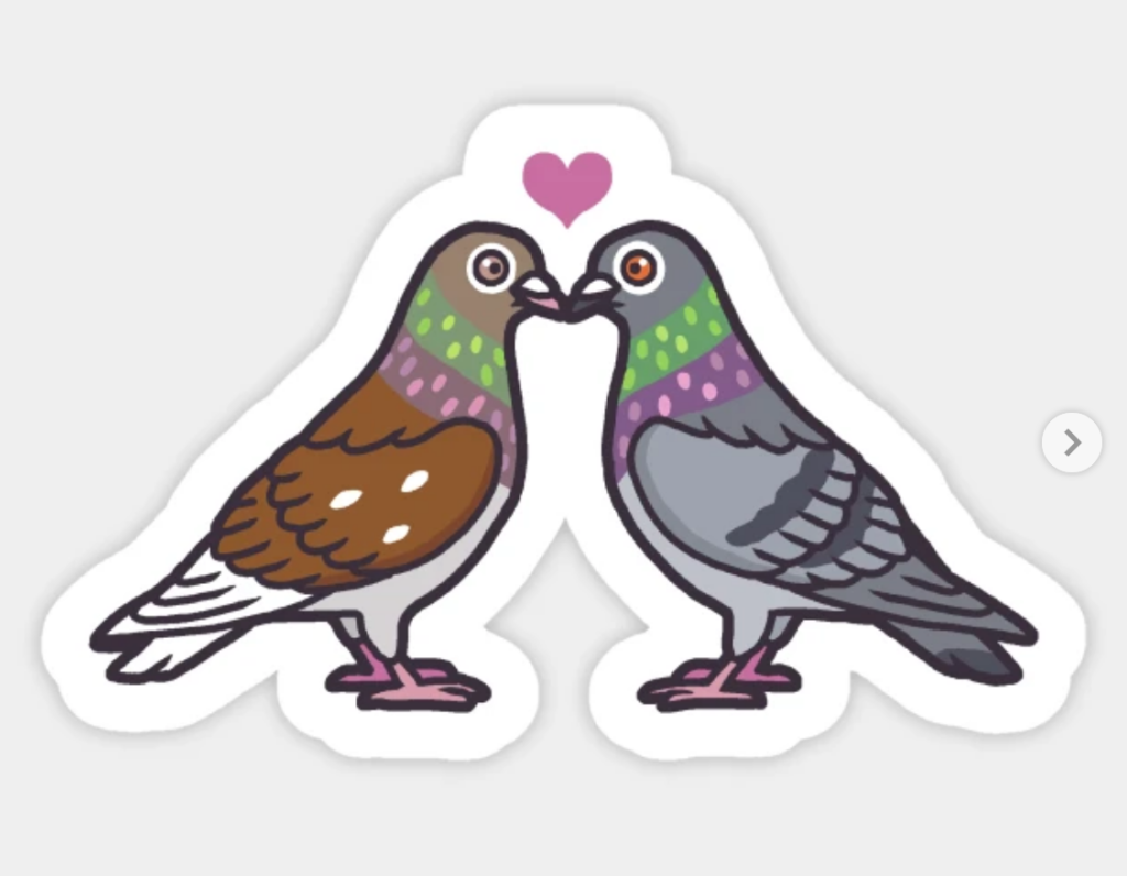 two cartoon pigeons standing beak to beak with a heart over their heads